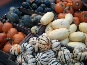 Winter Gourds